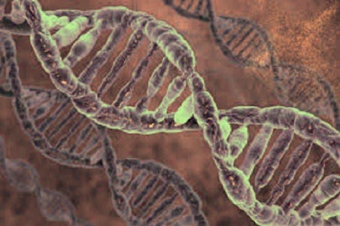 بالصور : كشف ثوري في علم الجينات يطيل الأعمار الى 160 سنة