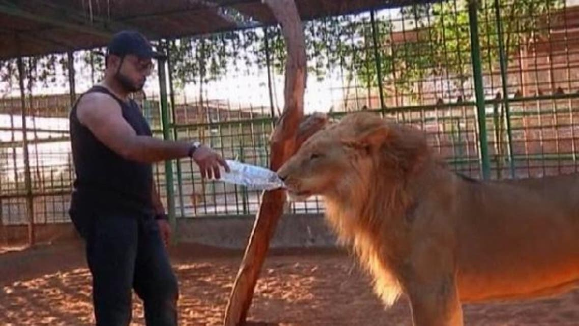 At a wildlife park in Ras al-Khaimah in the UAE, Jasim Ali takes care of wild animals bought on the black market and then abandoned, and devotes himself to adopting neglected and mistreated creatures. (Reuters)