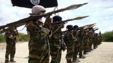 US air strike kills 13 ISIS terrorists in Somalia
