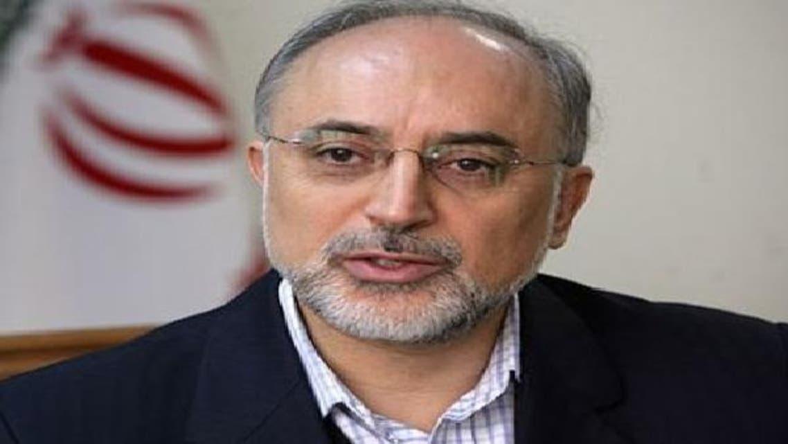 علی اکبرصالحی: از طرح بشار اسد برای پایان بحران حمایت می کنیم
