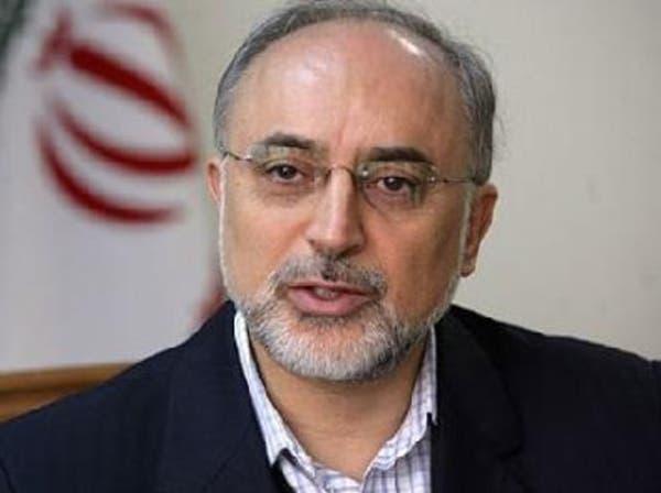 علی اکبر صالحی و سازمان انرژی اتمی ایران تحریم میشوند