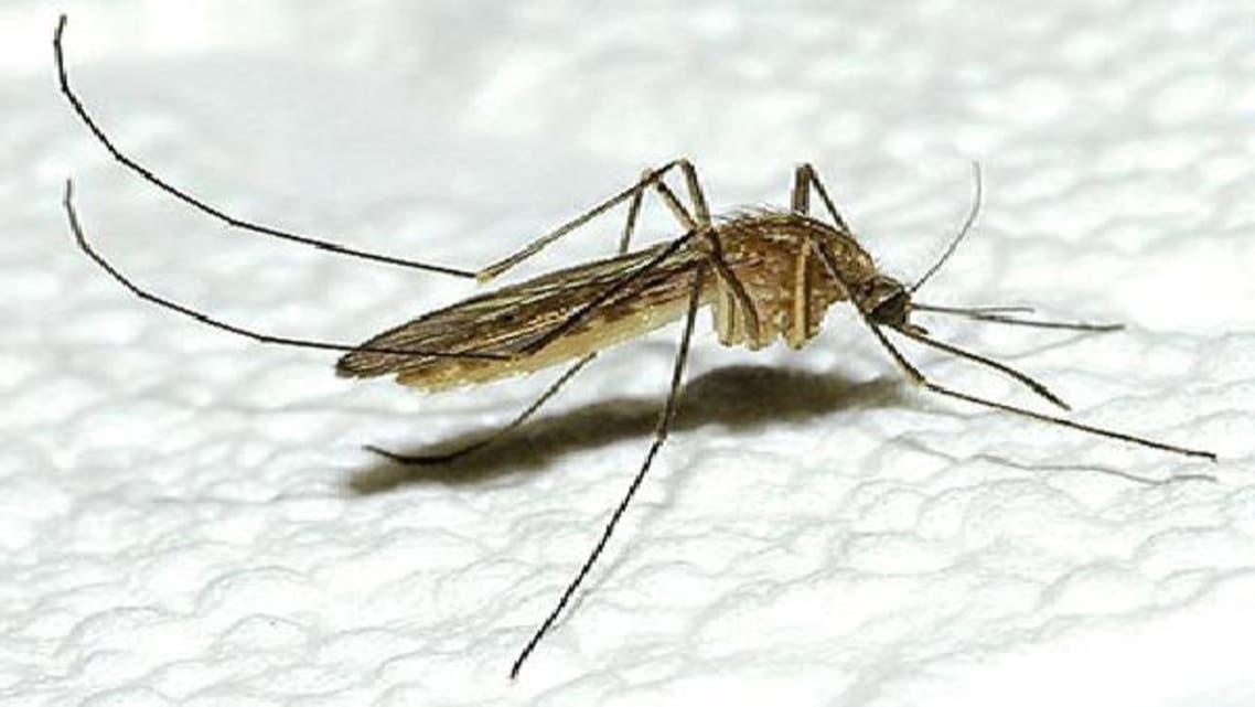 """مكيف هواء يطرد \\""""أنثى\\"""" الناموس ويكافح الملاريا"""