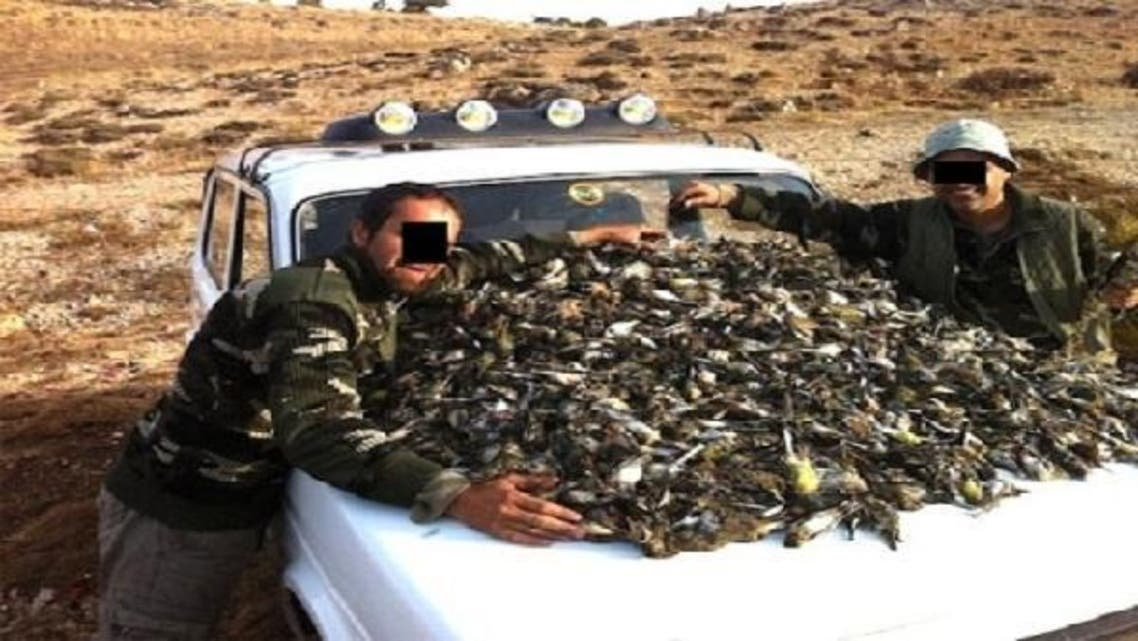 Millions of migratory birds including five globally threatened species are killed every year in Lebanon. (Al Arabiya)