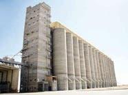 الزراعة السعودية: لدينا مخزونات كافية لتغطية حاجات السوق