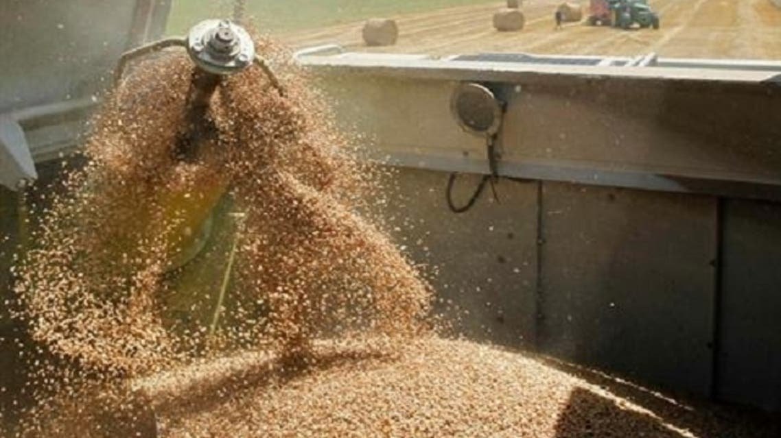 Although Western trade sanctions imposed on Assad's government have excluded wheat and other foods, the banking sanctions have deterred international trading firms from participating in Syrian grain tenders. (Reuters)