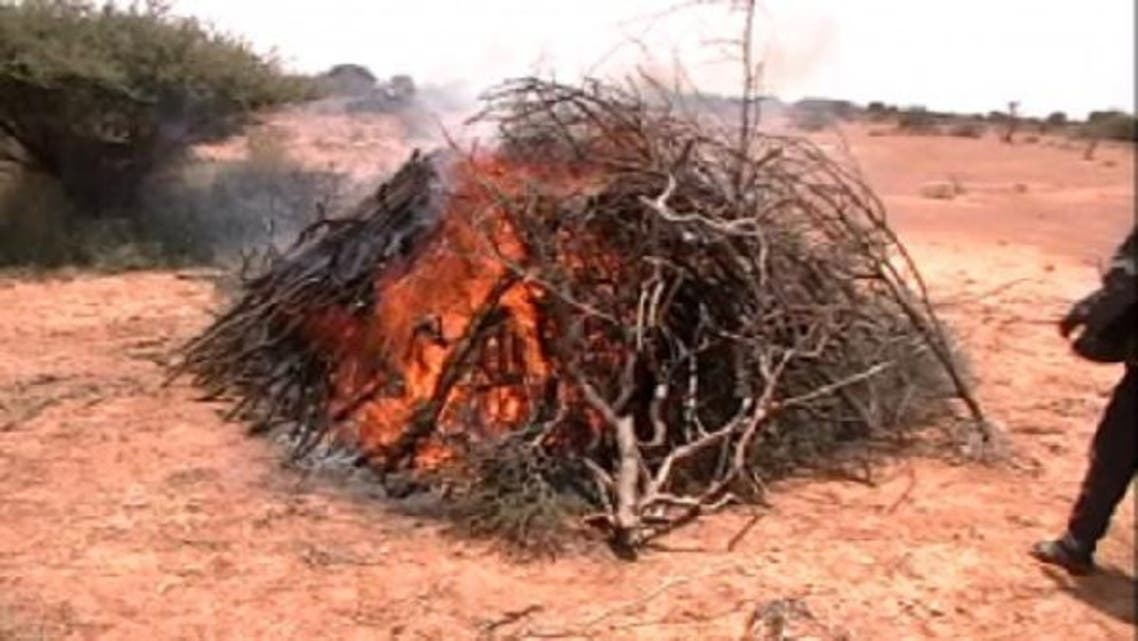 Heavy deforestation that risks turning large swathes of their country into a desert. (Courtesy: www.somaliareport.com)