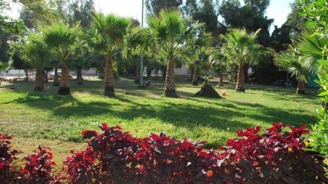 حدائق الطائف