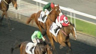 جوائز سباق الخيل في دبي تصل لـ25 مليون دولار