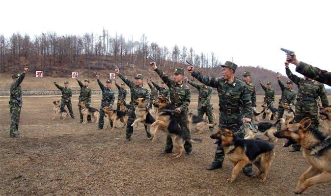 جانب من تدريبات جيش كوريا الشمالية