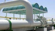 مصر تستكمل مفاوضات استيراد الغاز من الجزائر