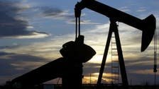 Oil prices fall on OPEC+ concerns over slow demand recovery, in spite of China growth
