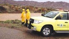 Saudi emergency plan set to combat extreme weather