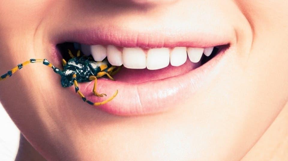 كتاب مكافحة الحشرات pdf