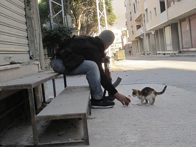 عنصر من الجيش الحر يطعم قطة