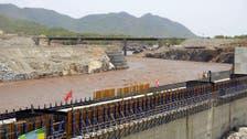 Cairo and Khartoum in talks on Ethiopia Nile diversion