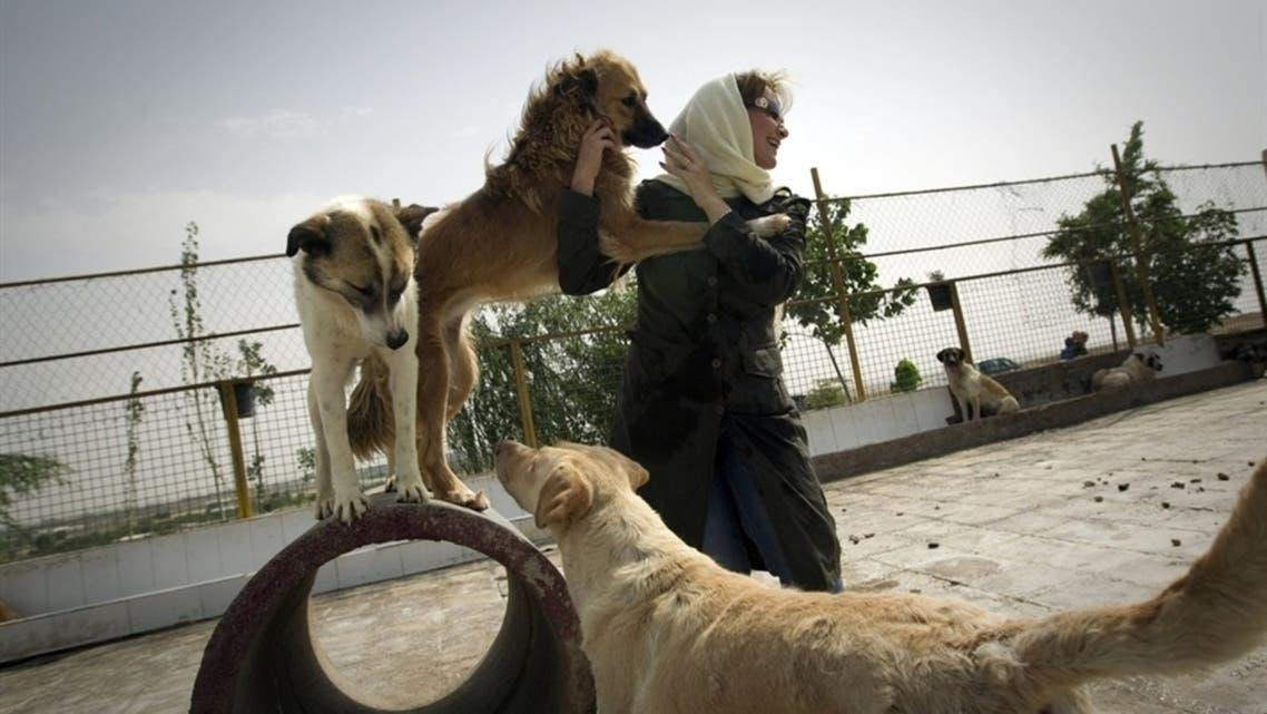 iran dogs AFP