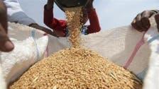 مخزون مصر الاستراتيجي من القمح يكفي 5.5 شهر