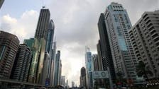 UAE will try 30 Emiratis, Egyptians for illegal Brotherhood cell
