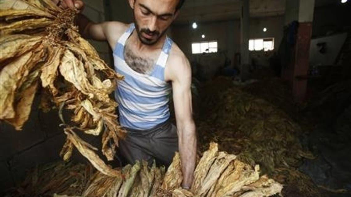 paletin tobacco reuters