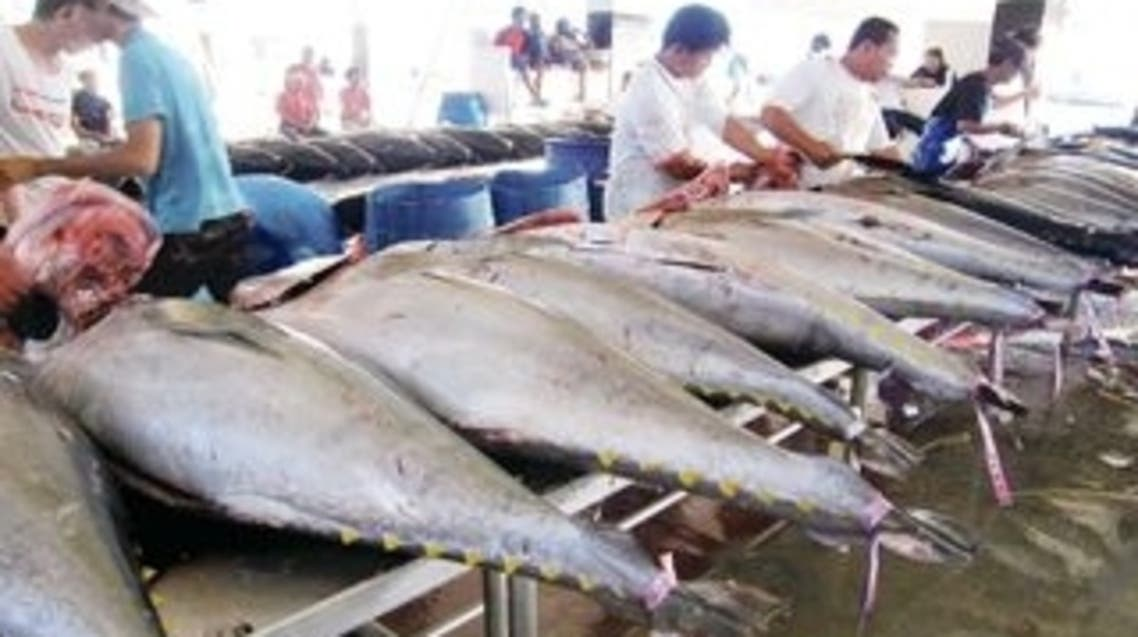 سوق الأسماك