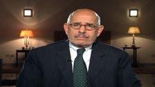 ElBaradei makes call for nationwide uprising against Mursi