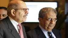 Main Egypt opposition tones down criticism of charter