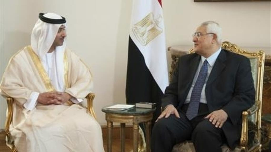 Egypt's interim President Adli Mansour (R) meets with UAE's National Security Adviser Sheikh Hazza bin Zayed al-Nahyan at el-Thadiya presidential palace in Cairo July 9, 2013. (Reuters)