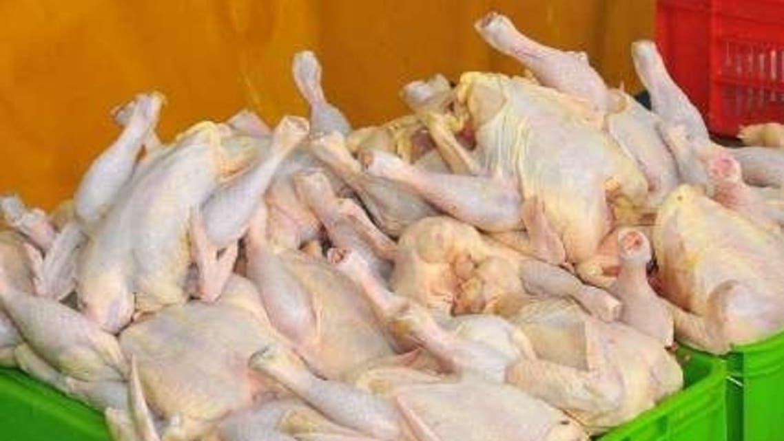 بازار مرغ ایران