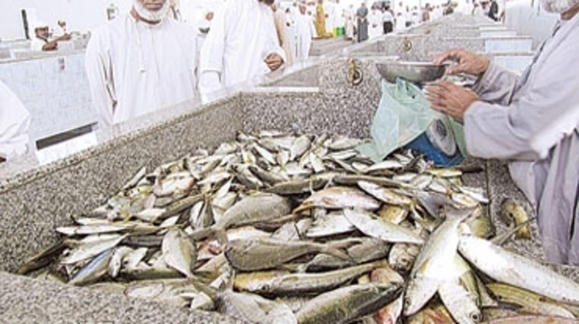 الثروة السمكية العمانية