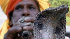 Snake festival charms villages in East India