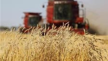 Russia plans to deliver grain to Iran in return for oil