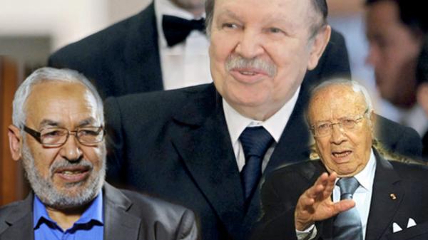 3ba8b8019 الجزائر تتوسط في الأزمة التونسية وتقارب وجهات النظر عكاشة: هذا الدخول فرضته  العديد من العوامل بين البلدين أهمها الإرهاب