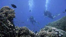 Scuba divers gather in Lebanon to give seabed a deep clean