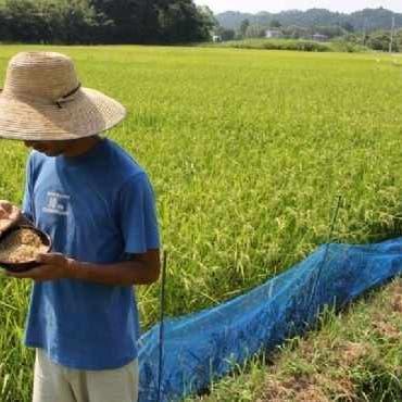 فاو: أسعار الأغذية العالمية ترتفع بعد شهرين من الانخفاض