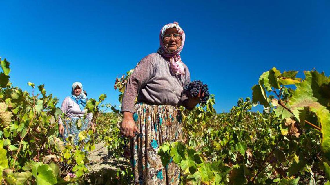 Turkey's ancient wine making tradition