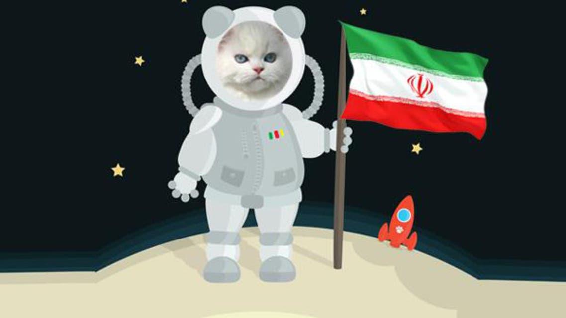 kitty al arabiya