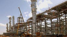 Algeria energy discoveries may double gas output, says minister