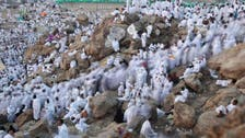 Hajj pilgrims gather on Mount Arafat for prayer and reflection