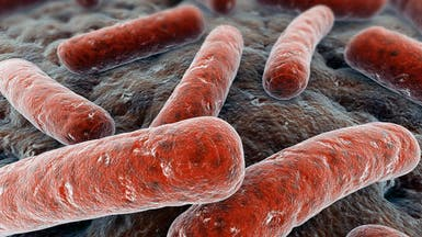 الصحة العالمية: زيادة مقاومة السل للأدوية تهدد مكافحته