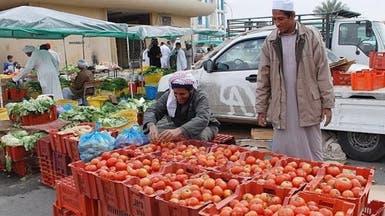 المقاطعة الشعبية تطيح برؤوس الطماطم في السعودية