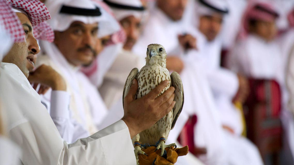 Falcon Auction in Doha