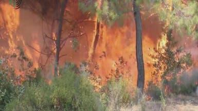 أهالي جبل الأكراد يشتكون من حرائق الغابات بسبب سقوط القذائف