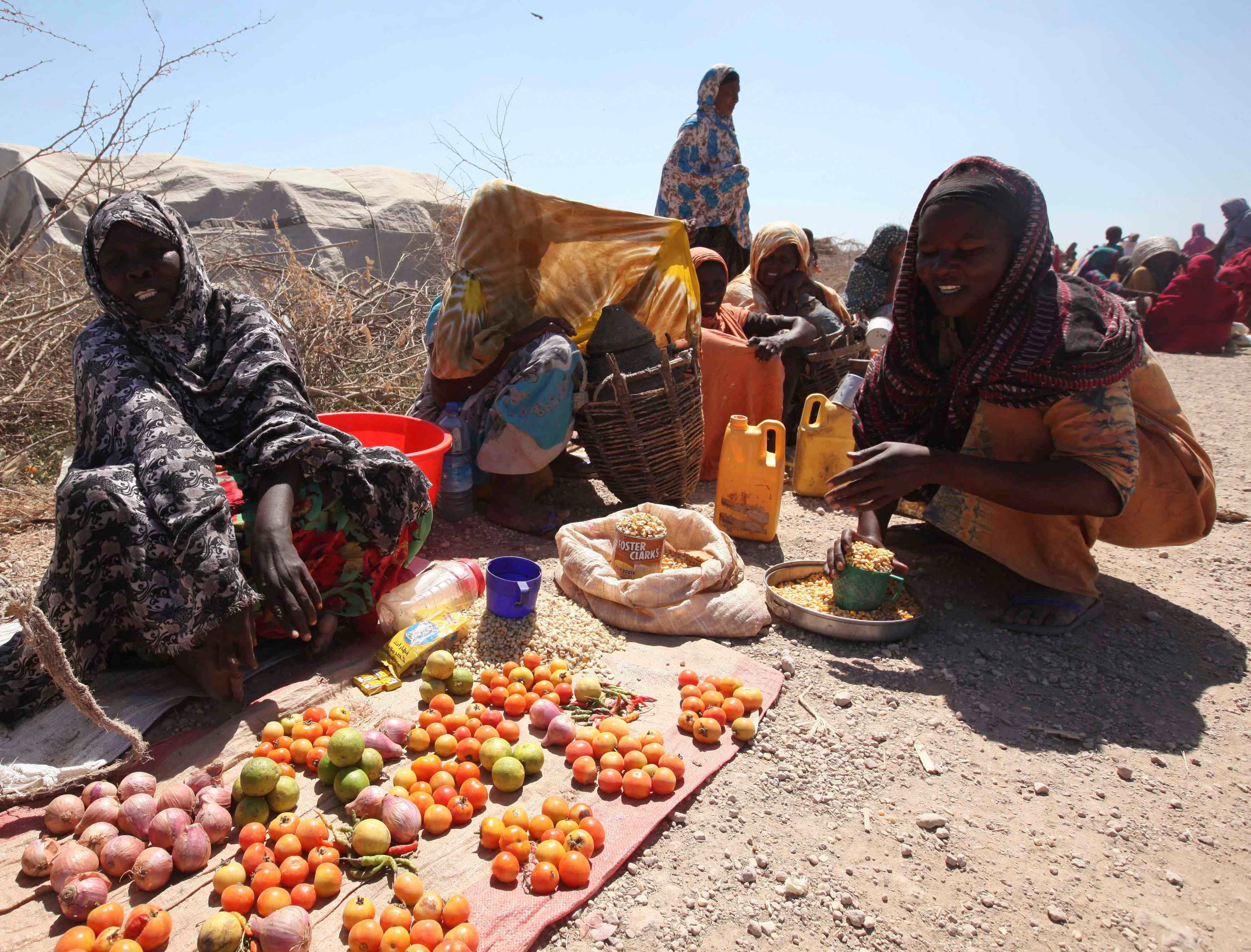Flood washes away food for Somalis