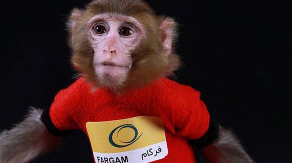iran space monkey