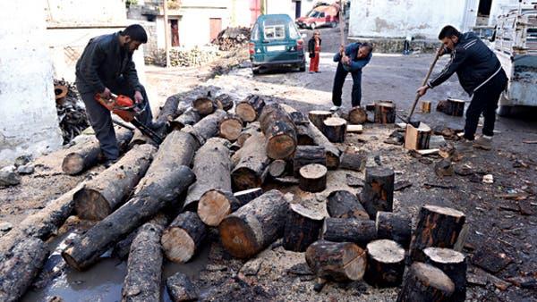 قطع الأشجار