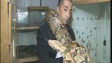 Poisonous passion: Palestinian man raises rare snakes