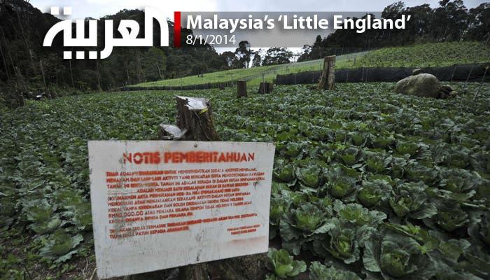 The Cameron Highlands: Malaysia's 'little England'