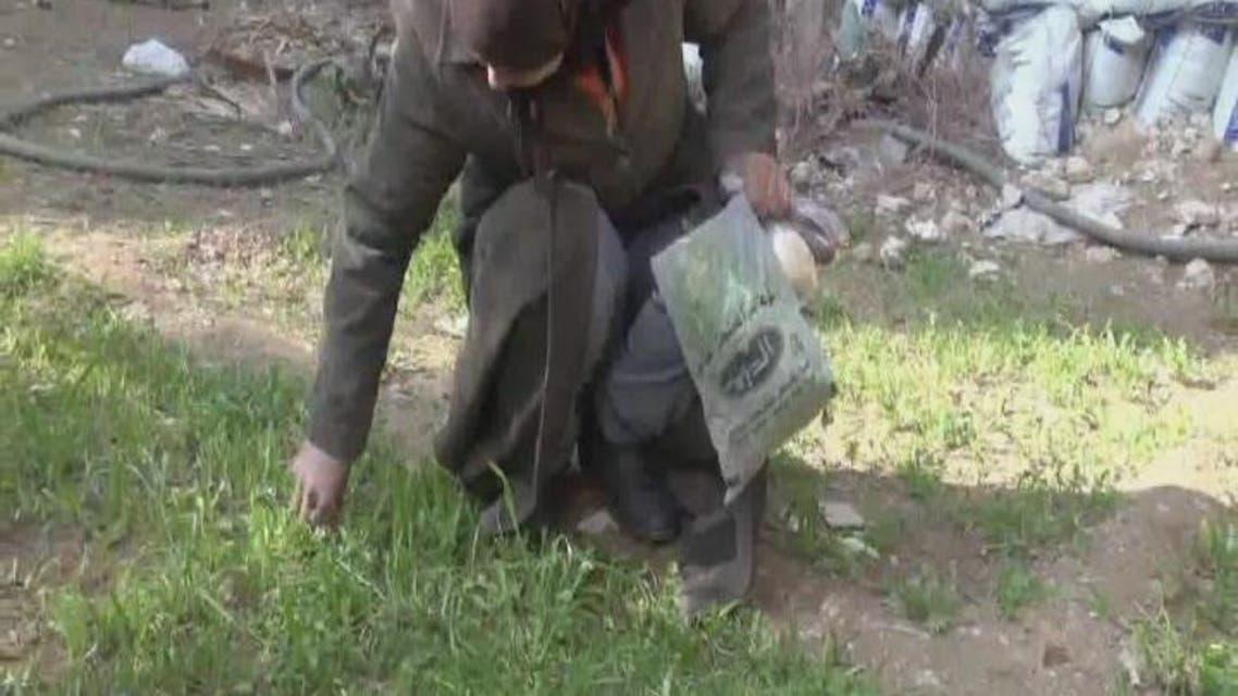 THUMBNAIL_ أهالي مخيم اليرموك جائعون ويقتاتون من أعشاب الأرض