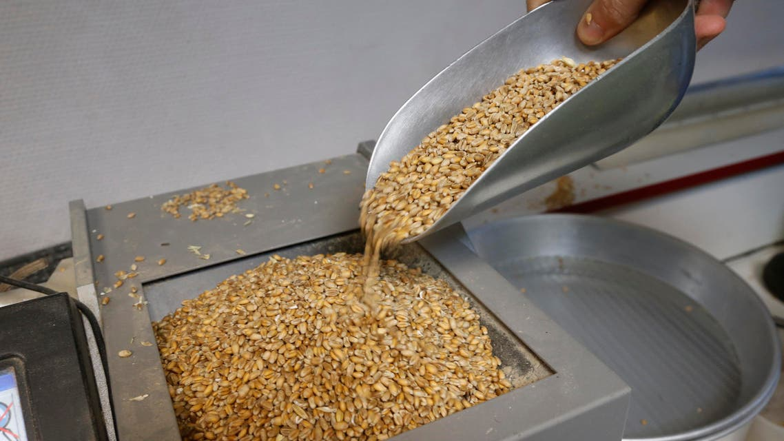 wheat reuters