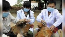 الصين تعلن عن وفاة شخص بفيروس أنفلونزا الطيور